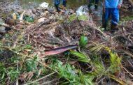Prefeitura retira mais de 1 tonelada de lixo de córrego da Reserve Du Moulin